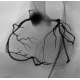 ANGIO MENTOR™ -  Coronary CTO New MODULE